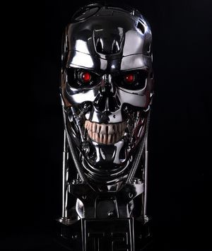 Reserve the terminator figure T800